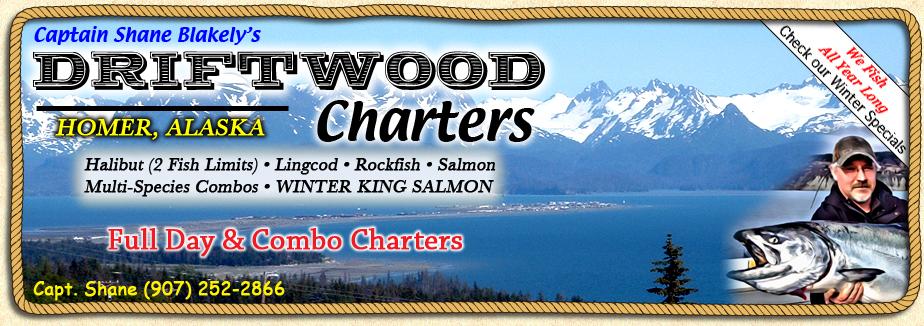 FISHING FOR HOMER ALASKA WINTER FEEDER KING SALMON with